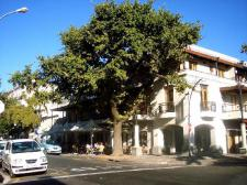 stellenbosch-hotel