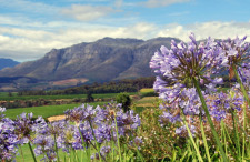 stellenbosch-south-africa