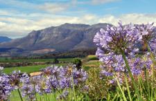 stellenbosch-south-africa